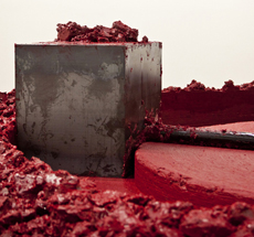 Anish Kapoor . MCA