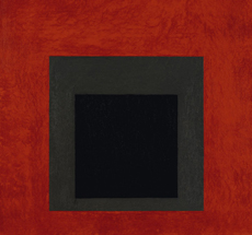 Josef Albers . Sublime Optics