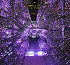 Ai Weiwei . Forever Bicycles