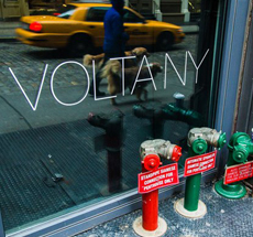 Volta NY gallery . New York . USA